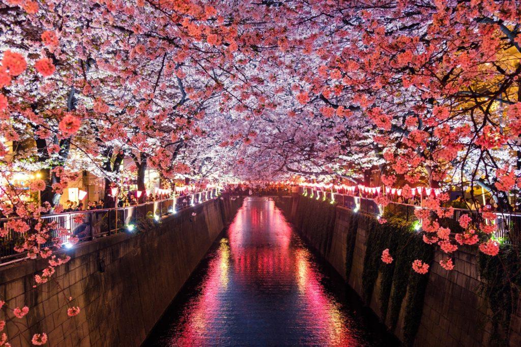 Nach Japan auswandern bild 1